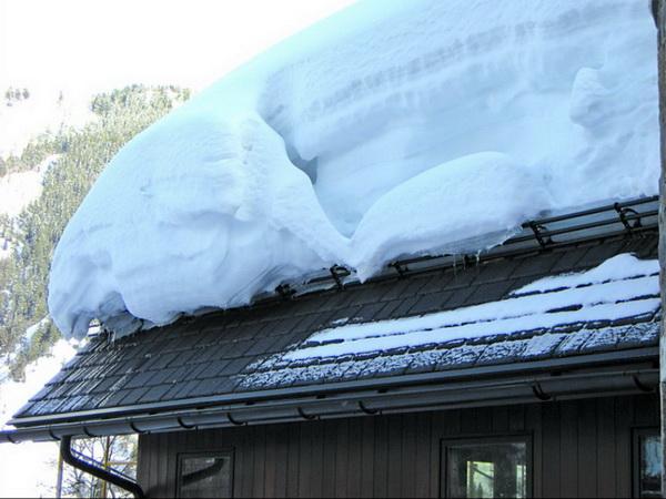 Снегозадержатели для защиты водостока