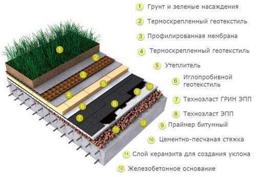 зеленая плоская крыша пирог