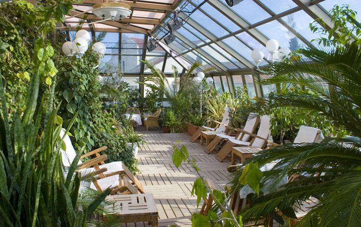 Зимний сад интенсивного типа с зоной отдыха